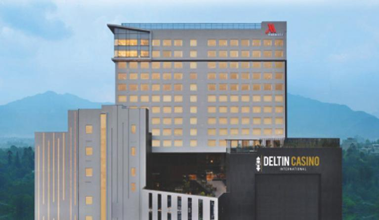 Deltin International