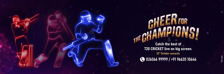 T20 Cricket Offer